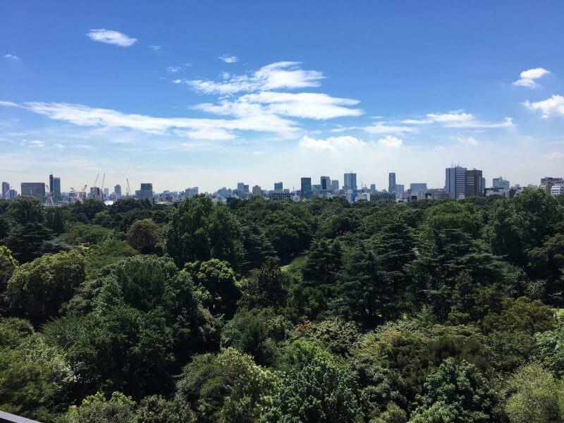 新宿御苑の森を一望するサロン